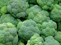 broccoli-f1-rock-br2br3-roccoli-f1-rock-br2br3-4