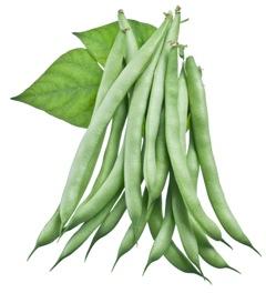 Bean & Pea