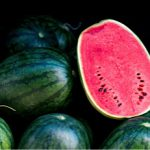 WATERMELON_F1_BLACK DRAGON 2