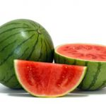 MINI SEEDLESS WATERMELON F1 G-774
