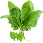 SPINACH F1 ASIA TOP